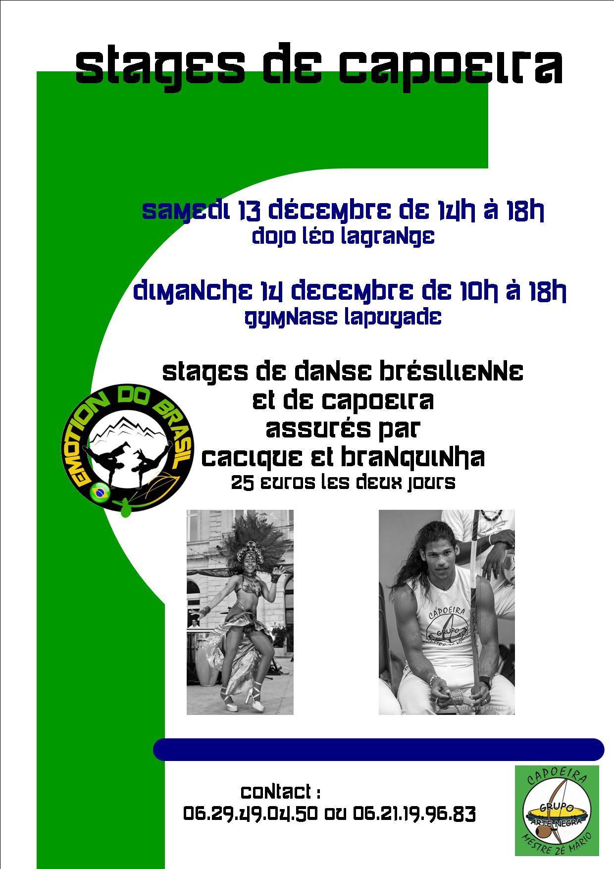 Stage capoeira Pau