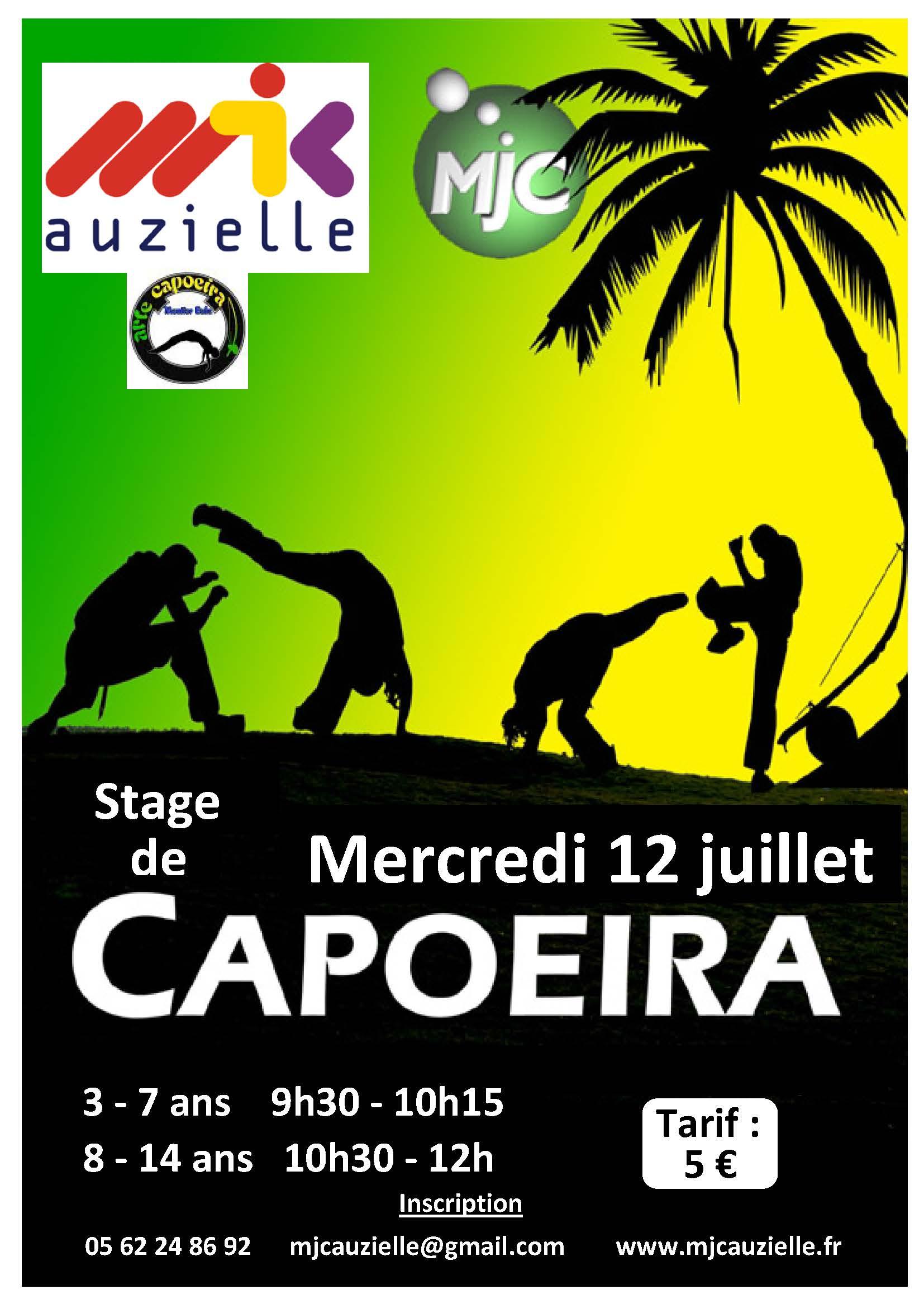 stage cours de capoeira auzielle